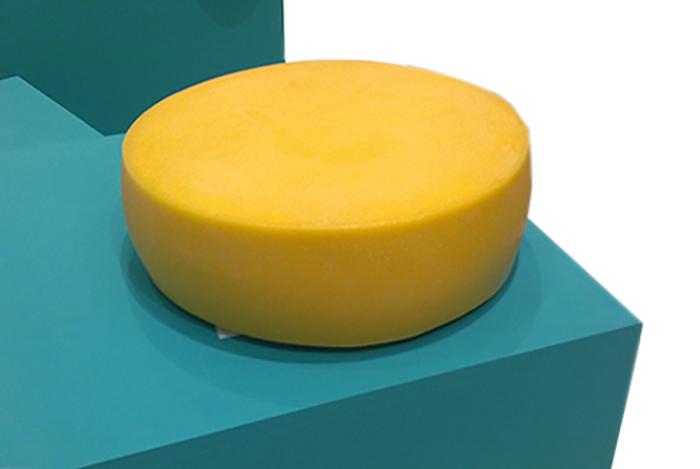 Получаемый сыр из цилиндрической формы