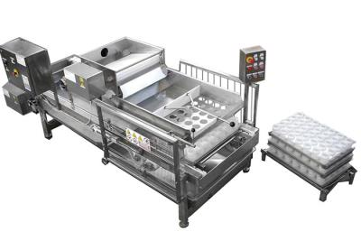 Машина для наполнения форм для сыра