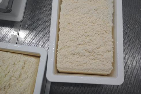 Форма с сырным зерном (наполнена формовочной колонной)