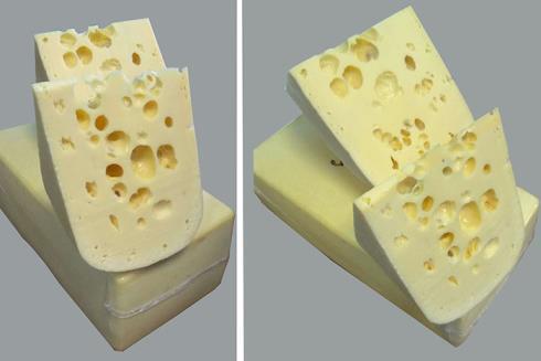 Производство сыра маасдам: технология, оборудование