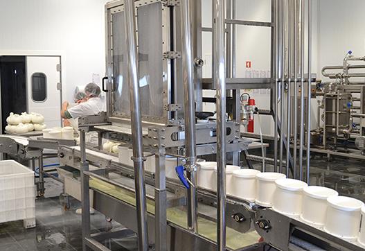 Колонна для сыра: автоматизация формования