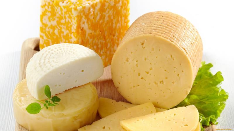 Сыроварня цена