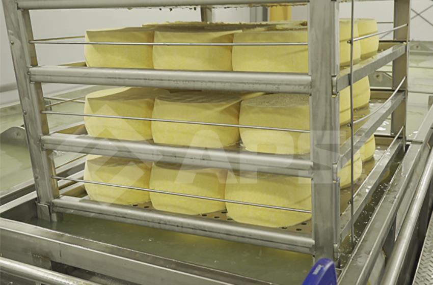 Погружение контейнера с сыром в солильный бассейн