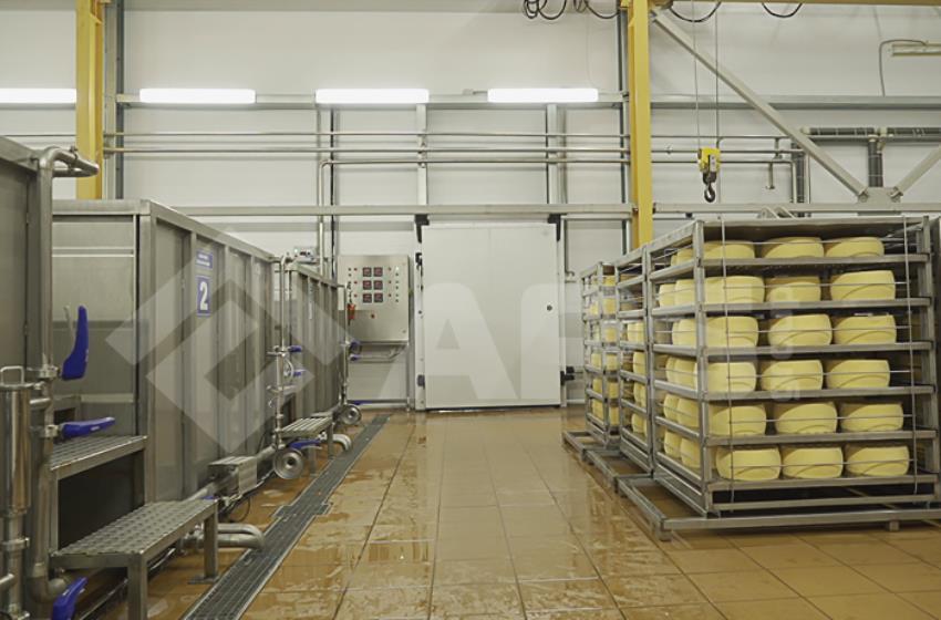 Сыродельный цех: солильное отделение