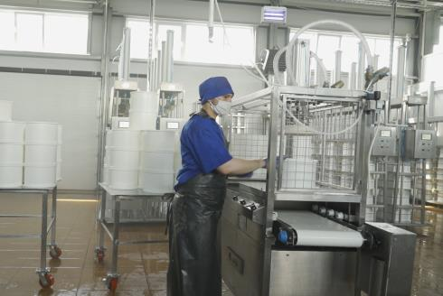 Распрессовыватель сырных форм: оборудование для сыра