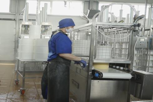 Комплект оборудования для производства сыра: распрессовыватель