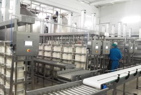 Линия производства сыра: участок прессования сыра